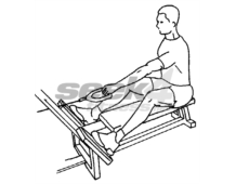 seated pulley rows
