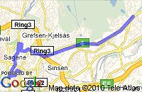 Tryna's rute ammerud-ringnes