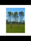 Harrod 6M Steel Rugby Posts (Half Set)