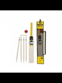 Gunn & Moore Halo Cricket Set